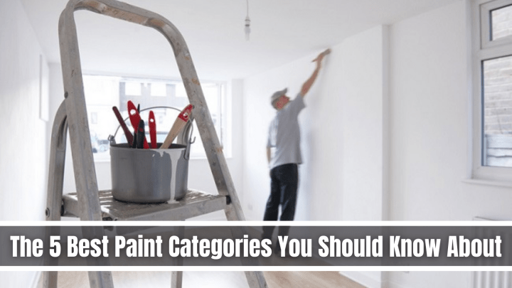 The 5 Best Paint Categories You Should Know About